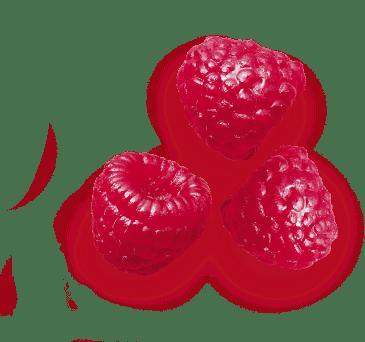 saint-mamet-framboises-équeutees-avec-feuille