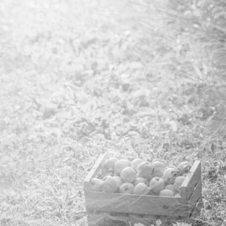 saint-mamet-fond-noir-et-blanc