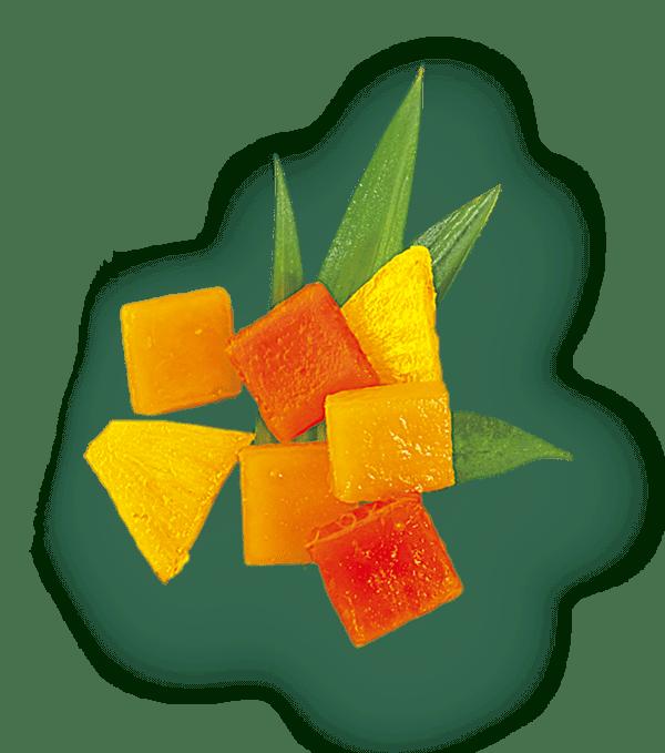 saint-mamet-fraicheur-des-iles-avec-feuilles
