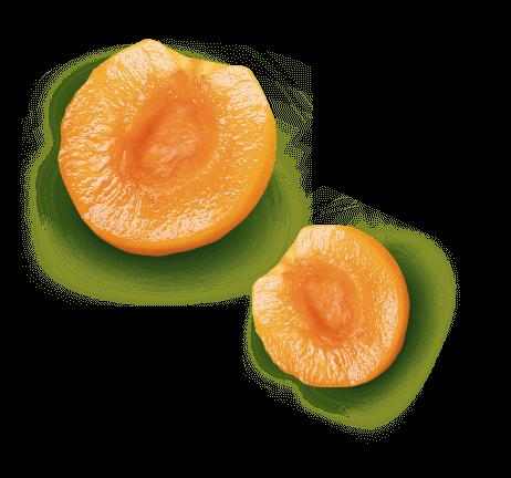 saint-mamet-abricots