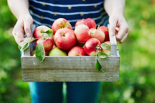 saint-mamet-paniers-de-fruits-pommes