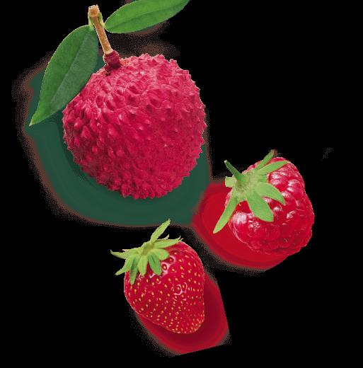 saint-mamet-fruits-rouges-cerise-framboise-fraises