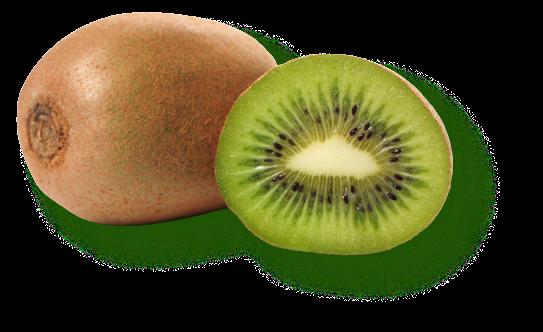 Saint Mamet - Kiwi - Plaisir de fruits