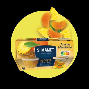 Saint Mamet - Plaisir de fruits Cup ananas mandarine